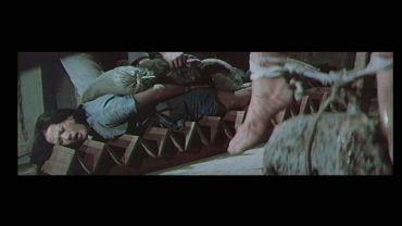 Im Camp der gelben Tigerinnen (1976)