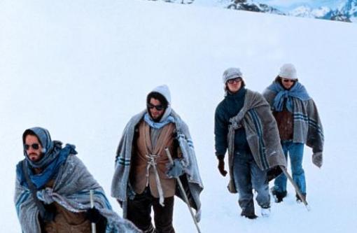 Der Kampf um´s Überleben im kalten Eis fordert seine Opfer