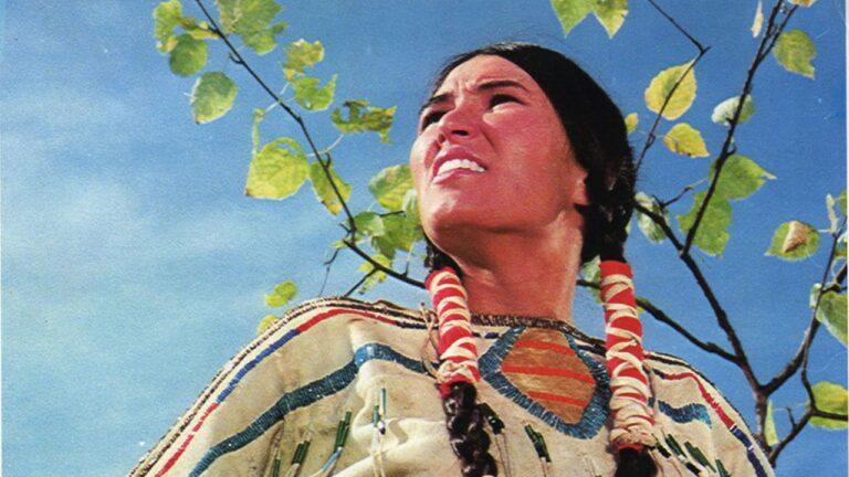 Kritik: Winterhawk (1975)