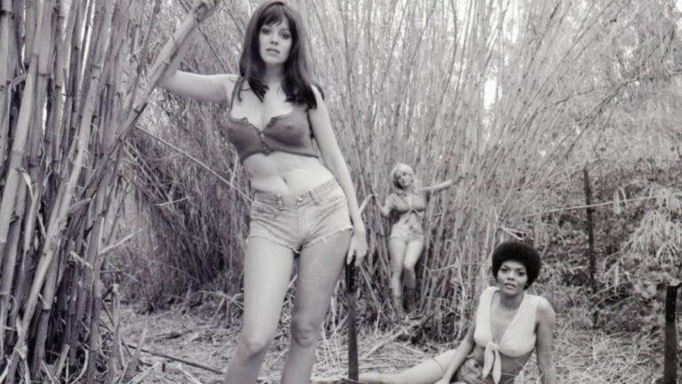 Zwangsarbeit ist kein Zuckerschlecken – Sweet Sugar (1972)