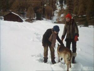 Mein Freund der Wolf