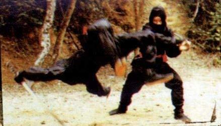 Die Nummer 30 der ASIA LINE – Die Vollstrecker der Ninja